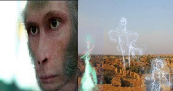 Terrifying killer Monkey man
