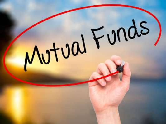 Mutual Fund: শুধুমাত্র মে মাসে ১ বছরের এফডি-র সমান রিটার্ন !!!