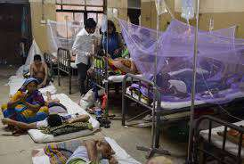 Death toll in dengue outbreak hits 40 in Bangladesh - News24