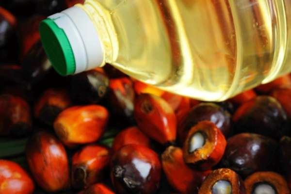 Malaysia Set to Replace Indonesia as Top Palm Oil Supplier to India